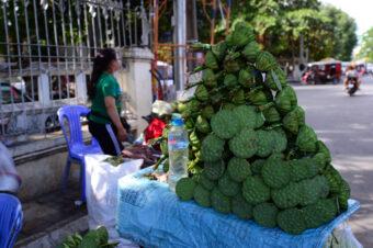 Kambodscha: Am Ufer des Tonle Sap
