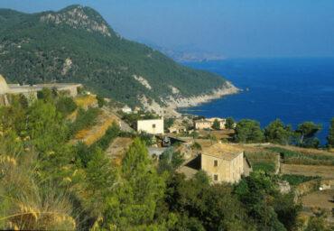 Mallorca: Viel Platz am Strand